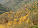M112 (217160 byte) - Autumn: view from Mount Bisbino