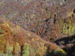 M314 (346809 byte) - Autumn in the Dongoli Valley