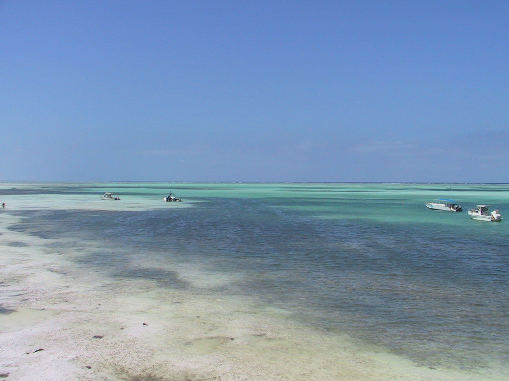 Sfondi Per Lo Schermo Mare Zanzibar