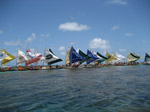 S122 (181692 byte) - Jangadas (sailboats) at the natural pools of Porto de Galinhas