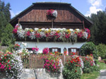 M85 (315650 byte) - House full of flowers in Pusteria Valley